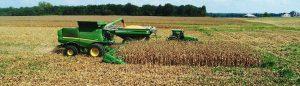 New Deal Credit Policies in Rural America